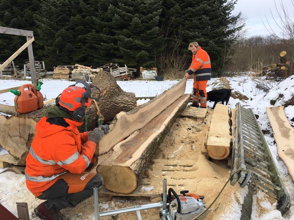 Skovteam skærer planker